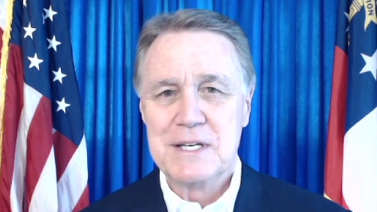 Sen. Perdue says he and Sen. Loeffler are 'last line of defense' against socialist agenda
