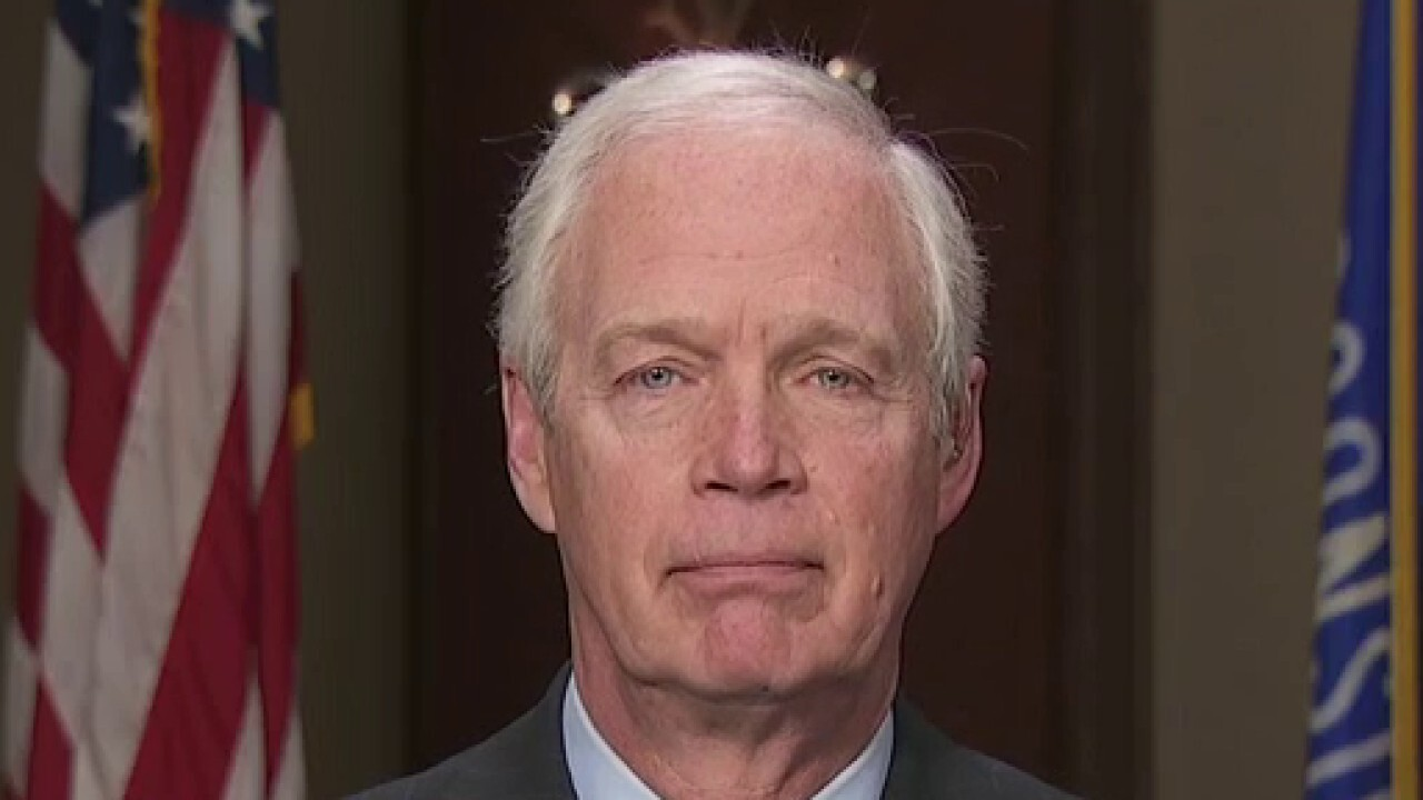 Sen. Johnson: Economy is 'ready to take off as long as Democrats don't snuff it out'