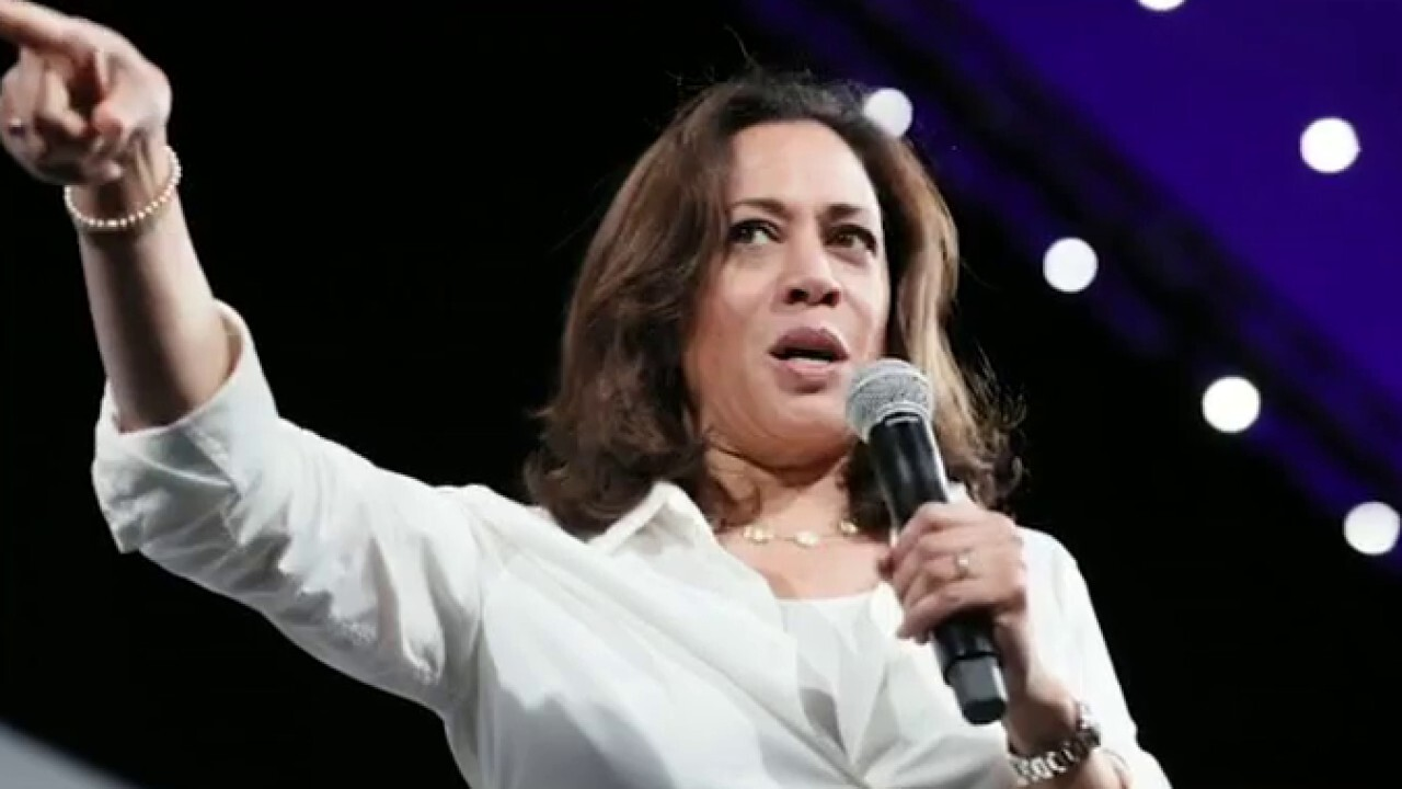 Gun rights advocate: Kamala's 'true stance' on guns is confiscation
