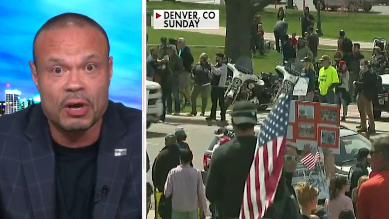 Dan Bongino rips Pelosi's response to protesters: 'Get out of your bubble, people need to feed their families'