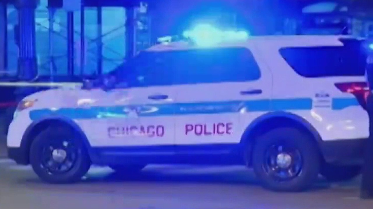 Chicago gang violence has become 'fashionable,' city is like 'The Purge': Activist