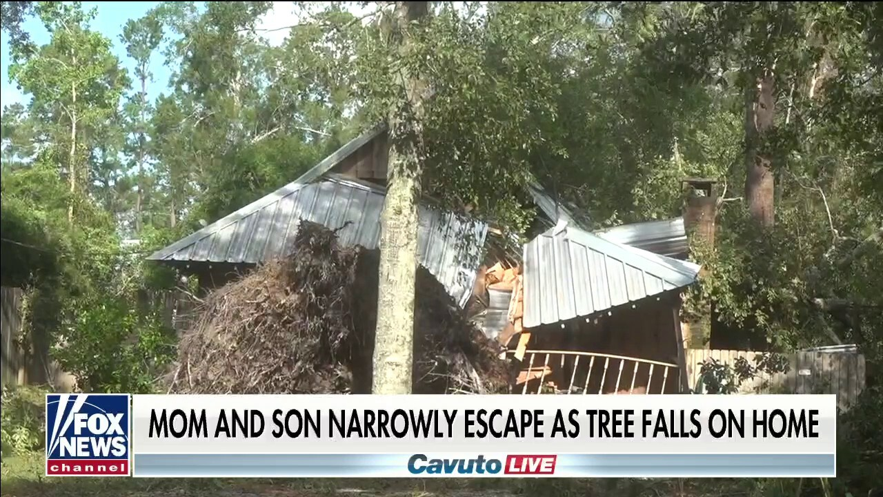Louisiana mom tells how she and her son escaped when a tree fell on their house during Hurricane Ida