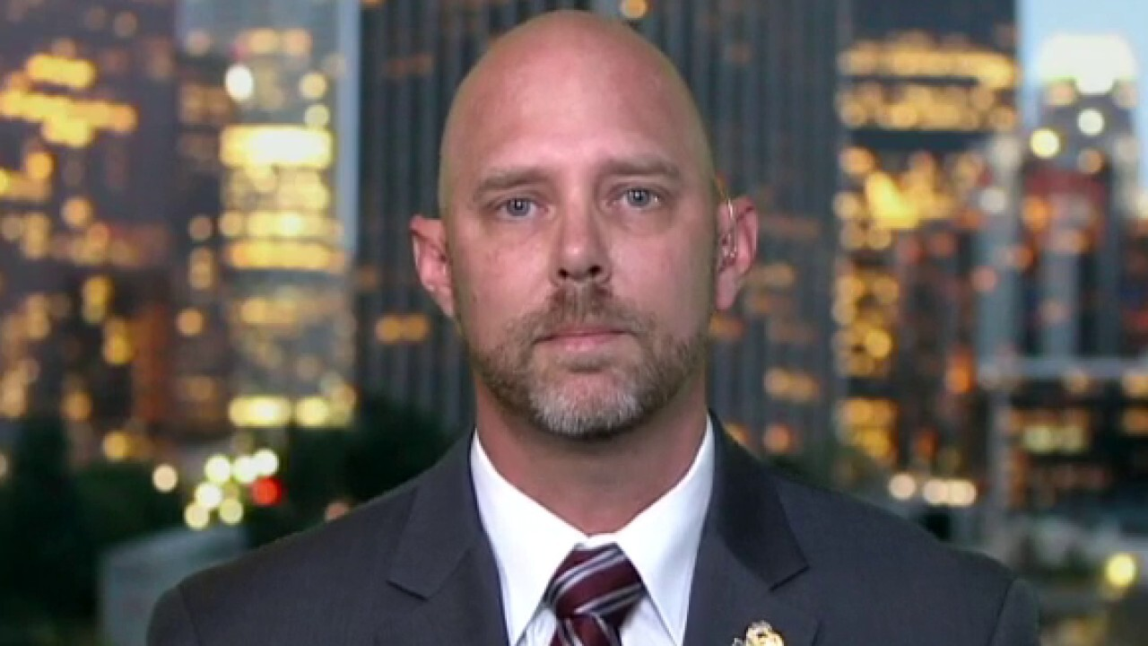 Los Angeles police union leader on proposed budget cuts