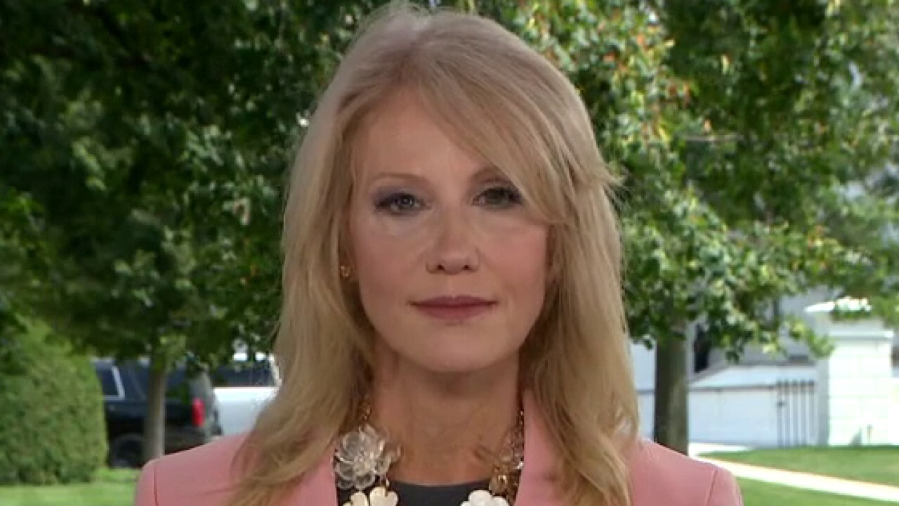 Kellyanne Conway weighs in on DNC, Trump's pandemic response and previews RNC