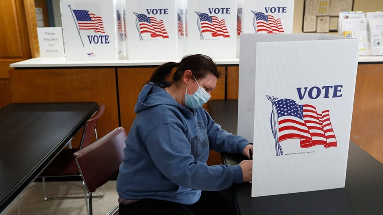 Polls show majority of Americans support voter ID laws