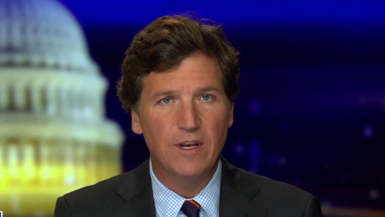 Tucker: Dems used the power of Big Tech to win presidential election