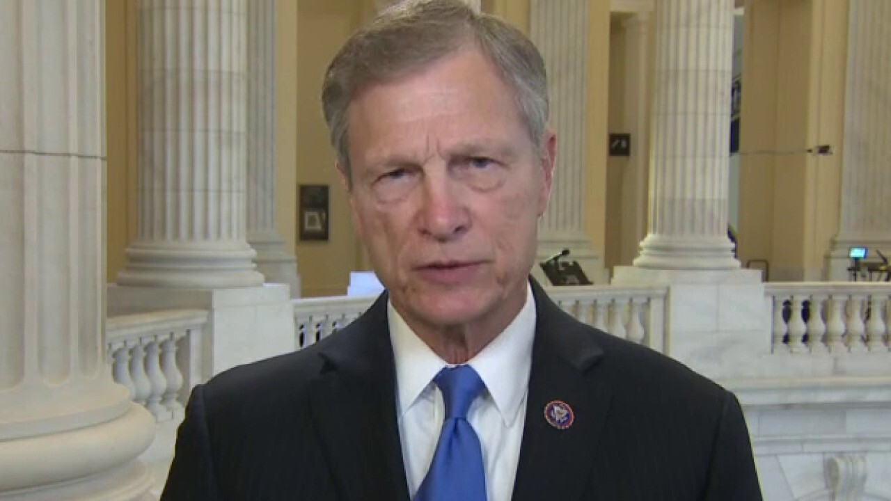 Rep. Babin: States violated the Constitution with changes to election laws