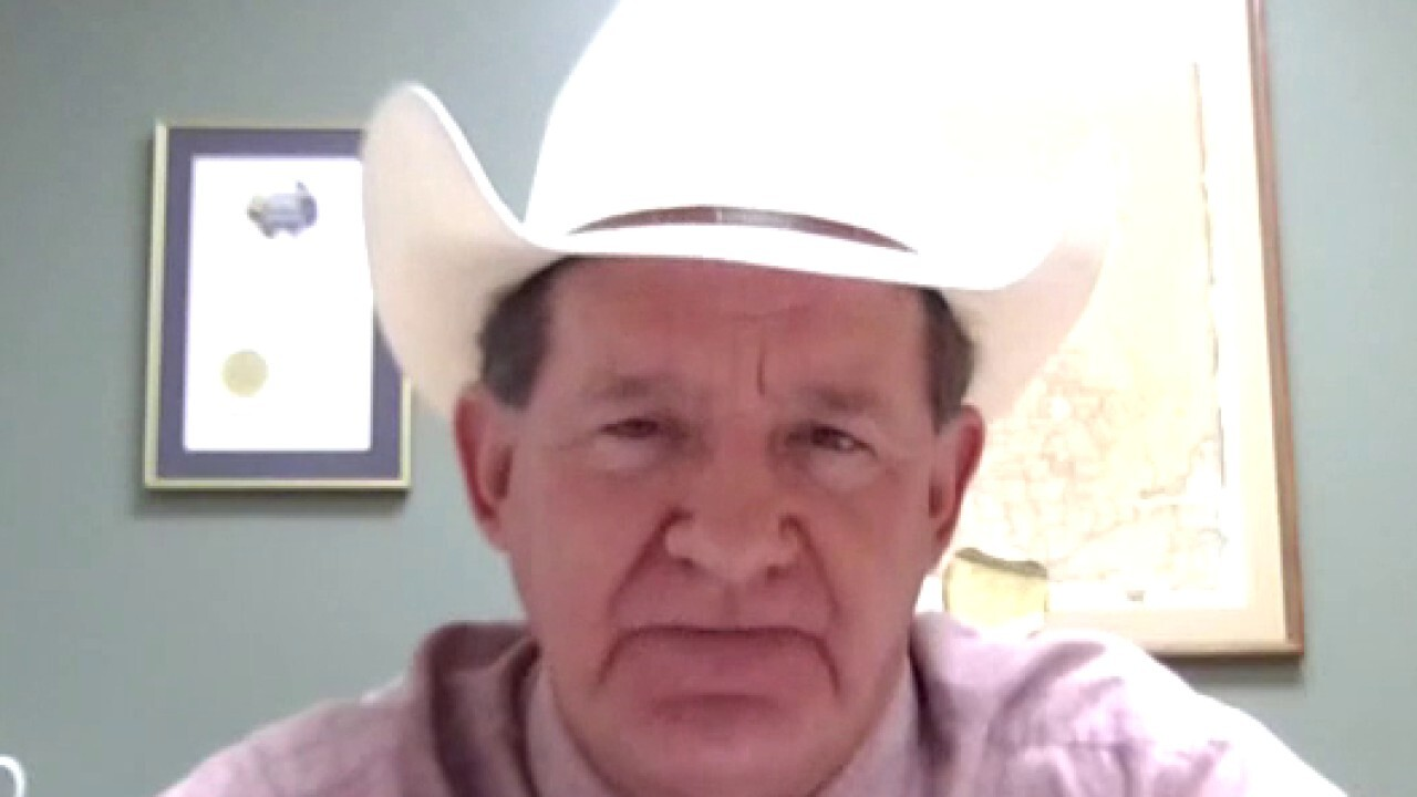 Texas sheriff on how border crisis impacts his community
