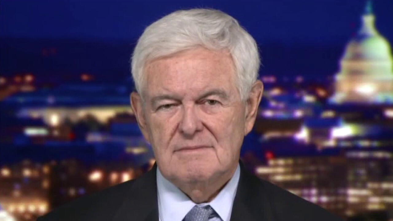 Newt Gingrich: 'Pelosi's running a dictatorship'