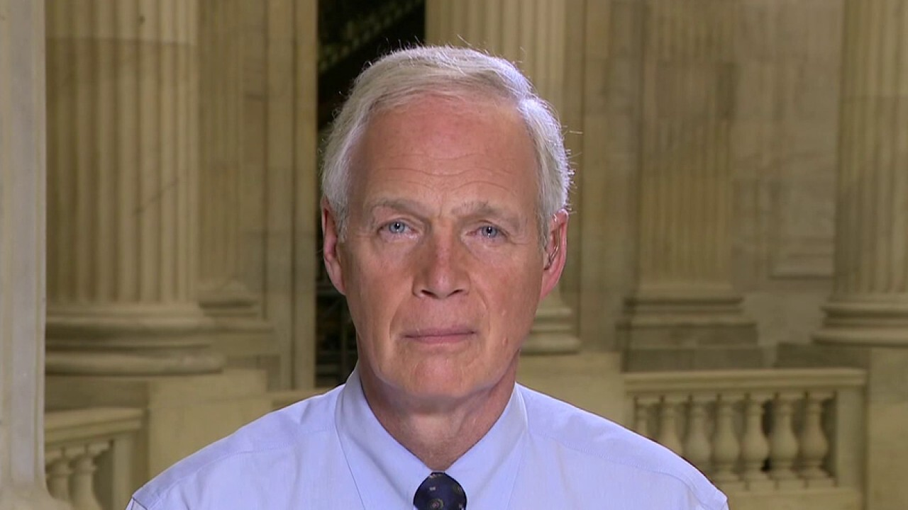 Sen. Johnson accuses FBI of 'slow-walking' Hunter Biden email case