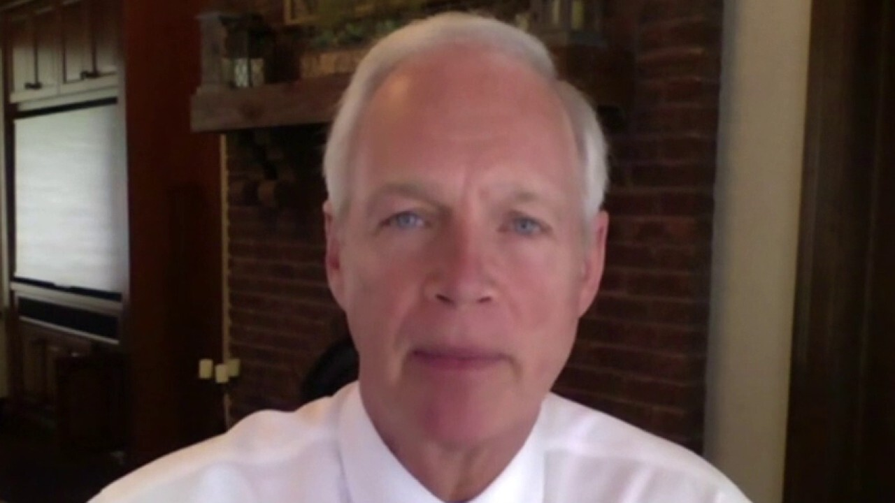Sen. Johnson reacts to Sen. Peters 'concerns' of Russia probe: We still don't have all the answers