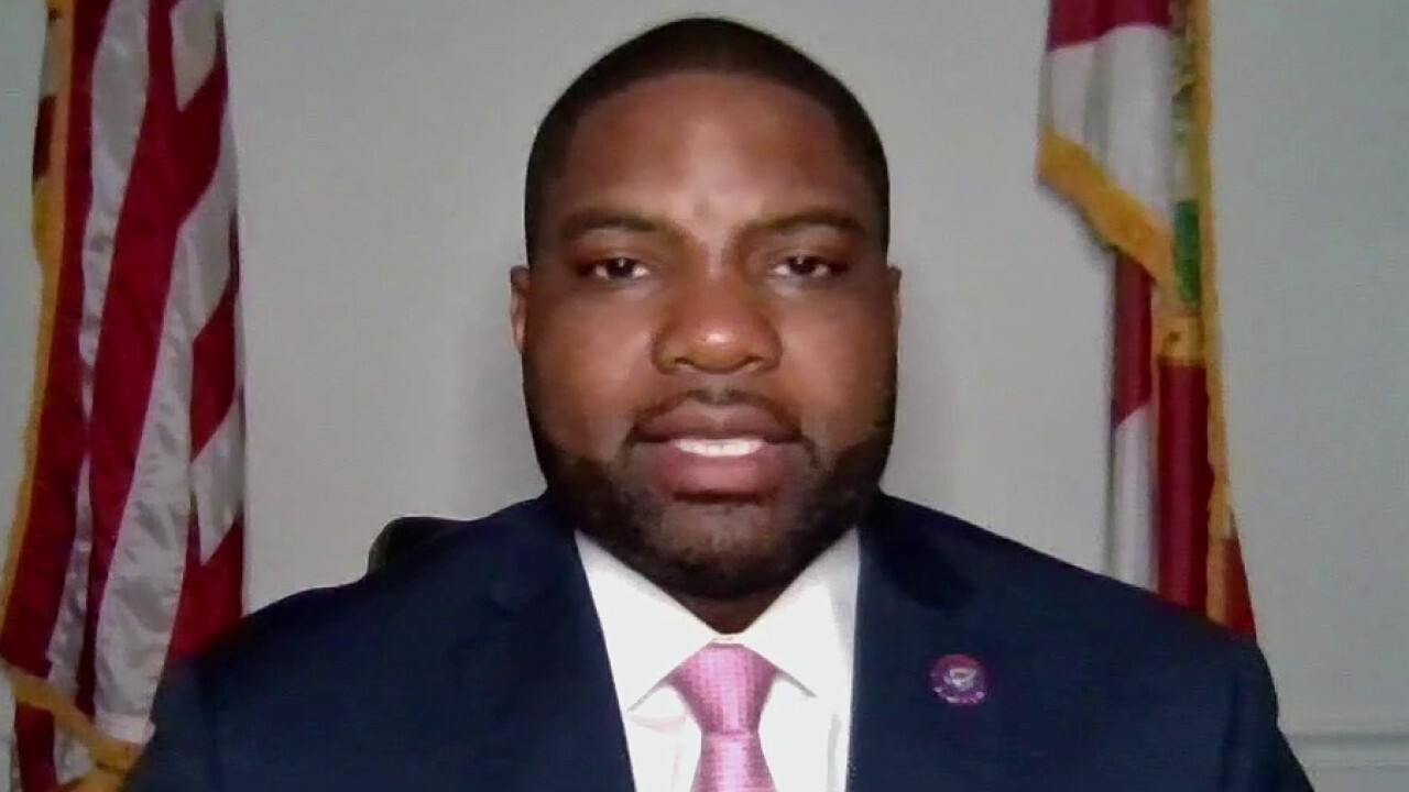 Rep. Byron Donalds: Florida election law 'makes the process cleaner'