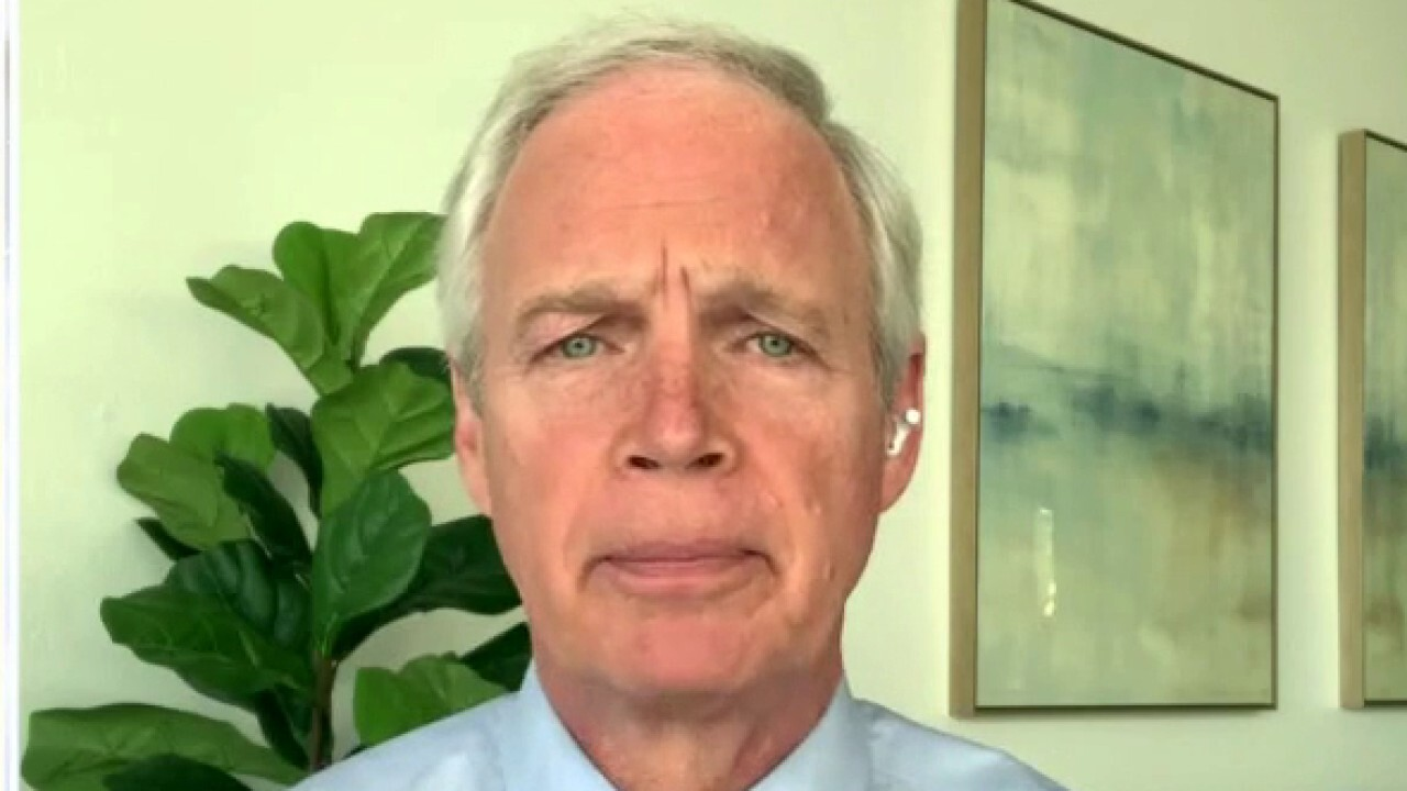 Sen. Johnson speaks out after dustup with Chuck Todd on election concerns