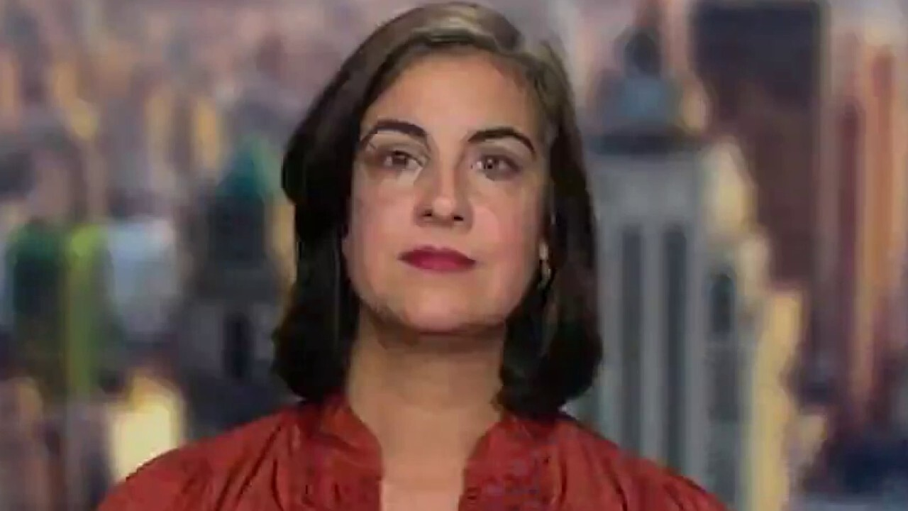 Rep. Nicole Malliotakis to Texas Dems: 'You don't run from a vote'