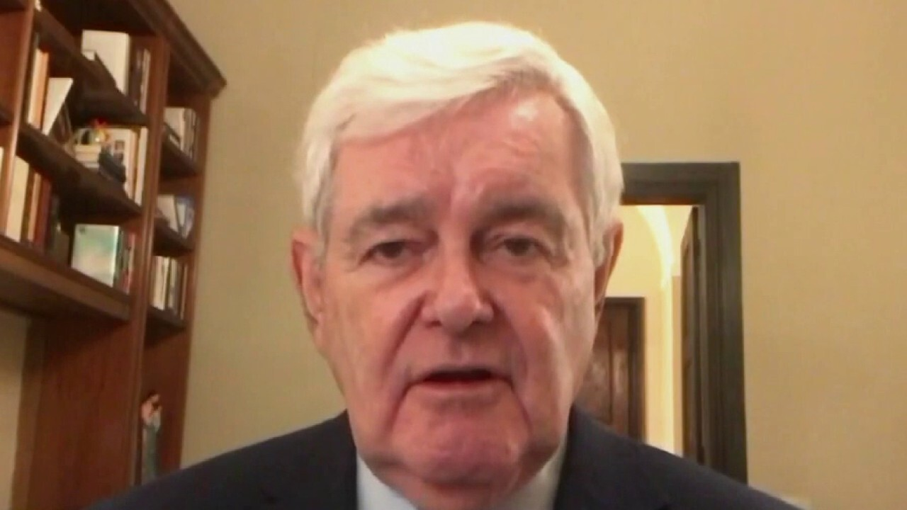 Americans 'deserve to know' the election was legitimate: Gingrich