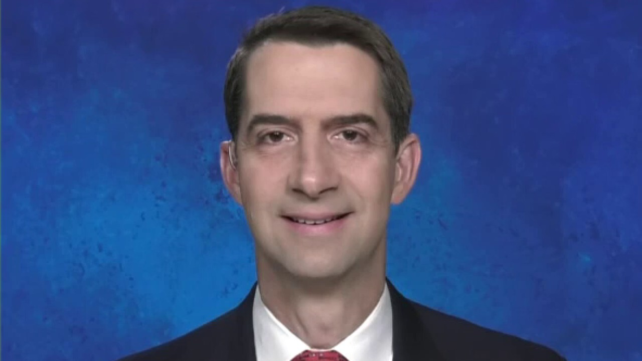Sen. Cotton: COVID-19 stimulus could have been done in September, was blocked by Pelosi