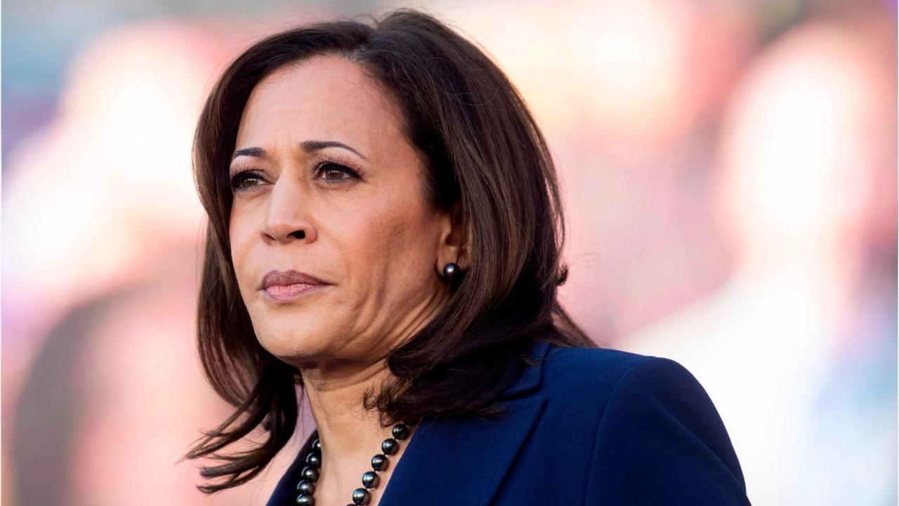 'The Five' react to Joe Biden's selection of Kamala Harris as running mate