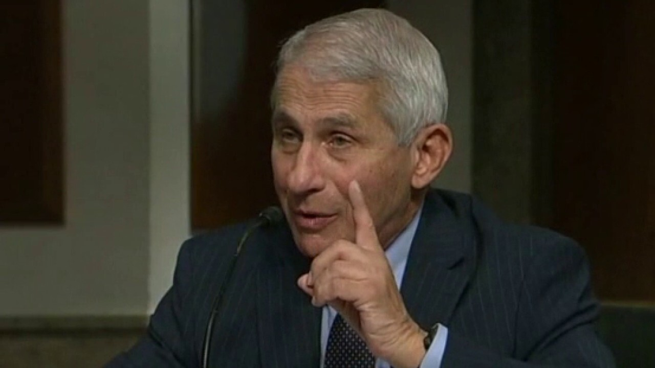 Fauci clashes with Rand Paul again at coronavirus hearing: 'You are not listening' – Fox News
