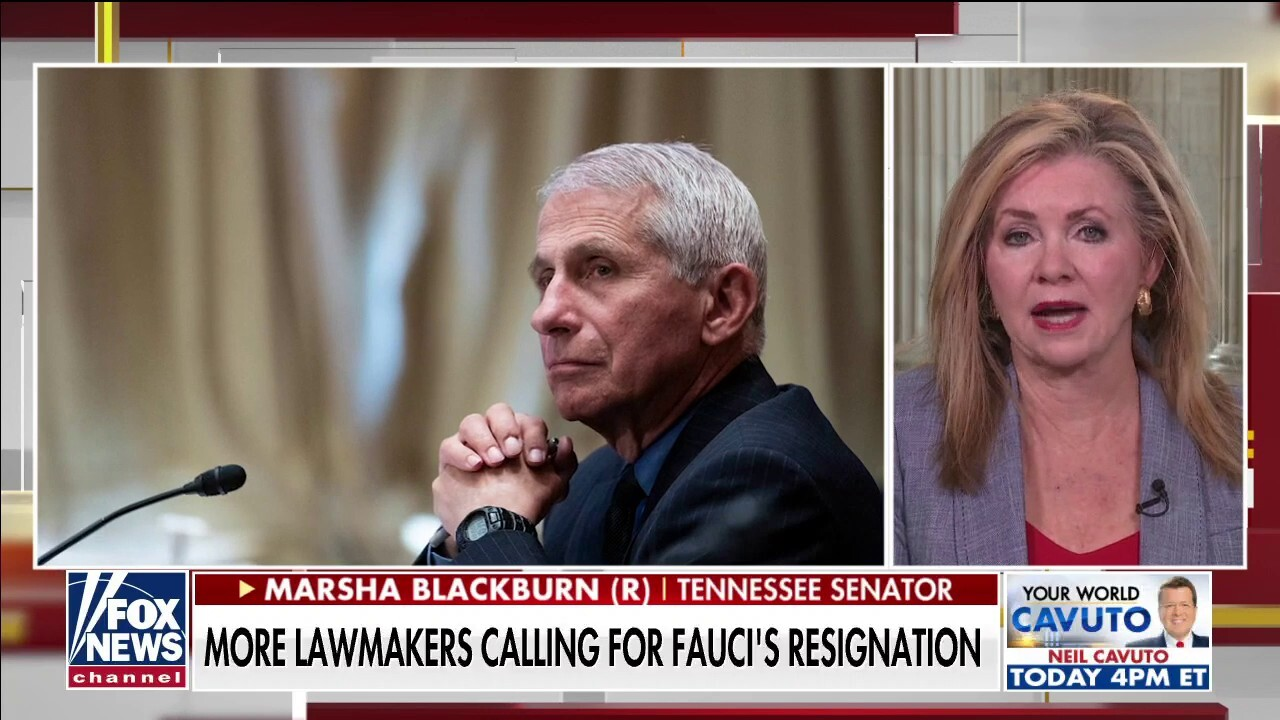 Fauci is using the media and Big Tech to build 'PR campaign' and deflect criticism: Blackburn