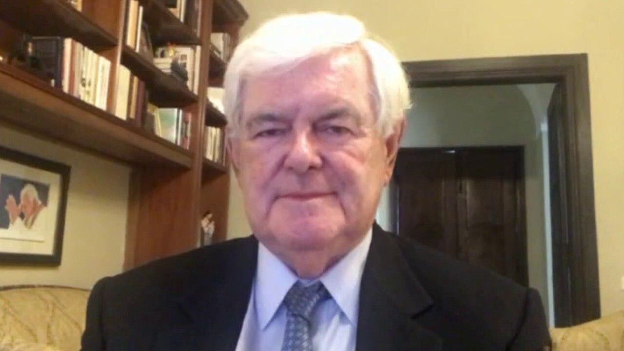 Newt Gingrich on mail-in voting concerns: 'Democrats are trying to steal election'