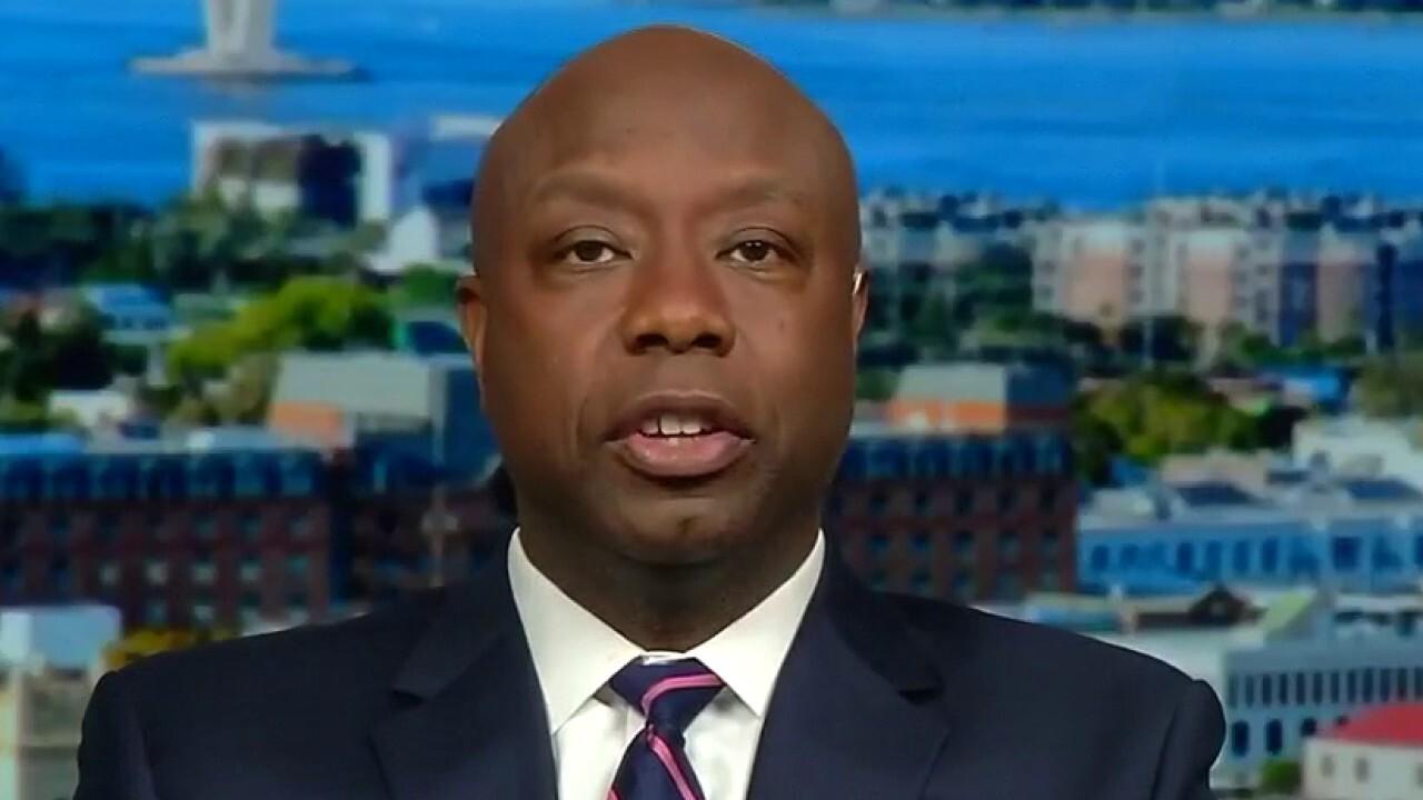 Sen. Scott, R-S.C., blasts Democrats overuse of 'racist' to describe opponents' politics