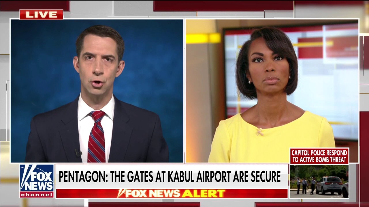 Sen. Cotton: Kabul, Afghanistan airport is 'total, violent chaos'