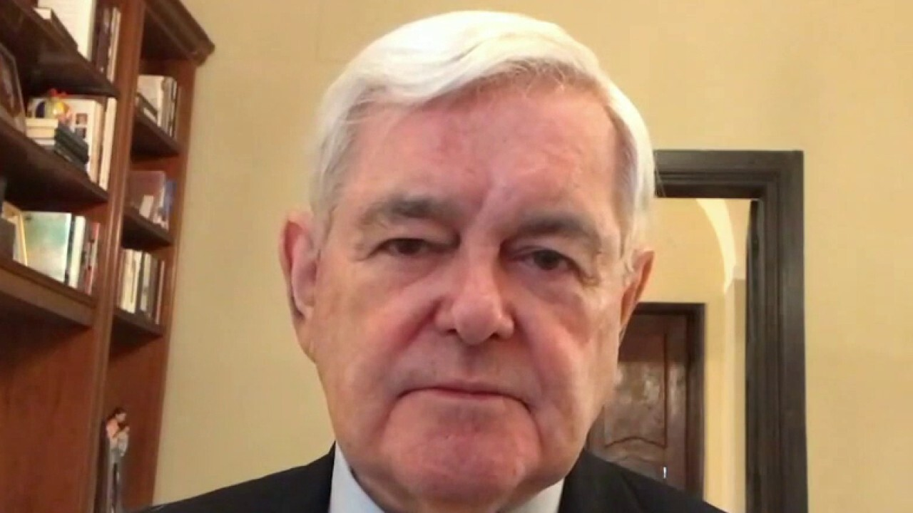 Dems better off ignoring Trump and impeachment, focusing on issues: Newt Gingrich