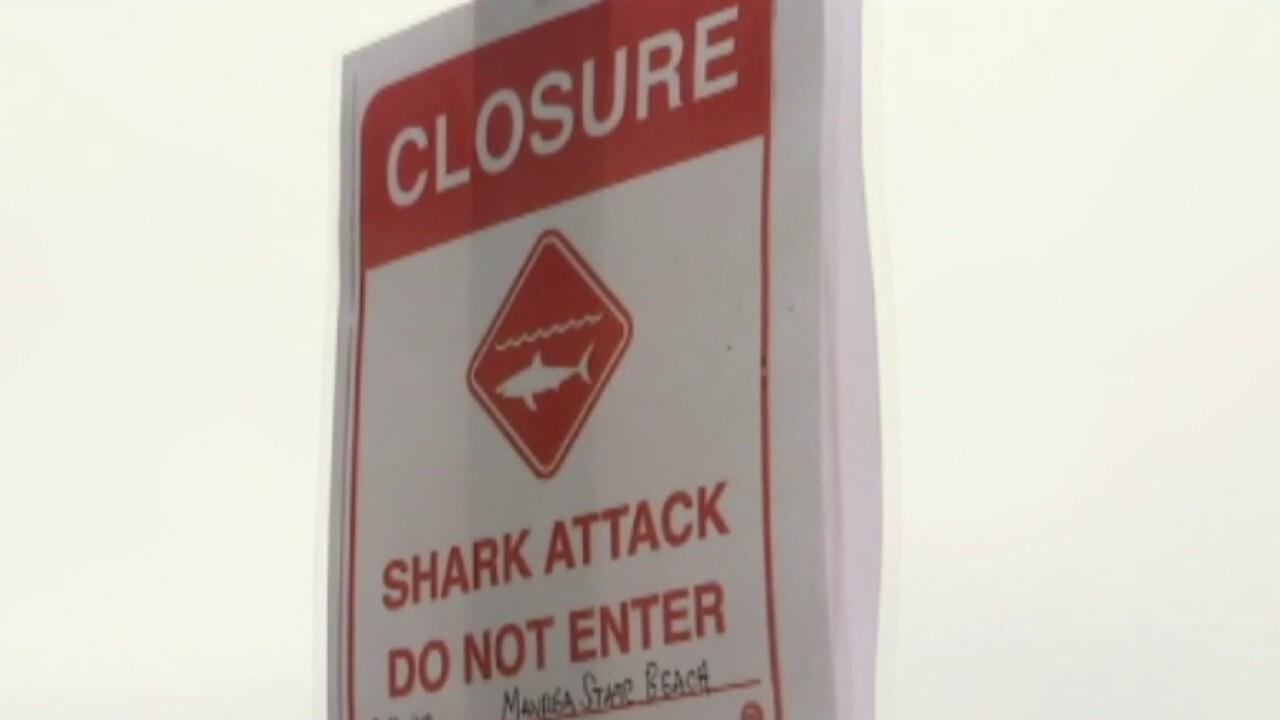 California surfer killed in shark attack, state beach closed