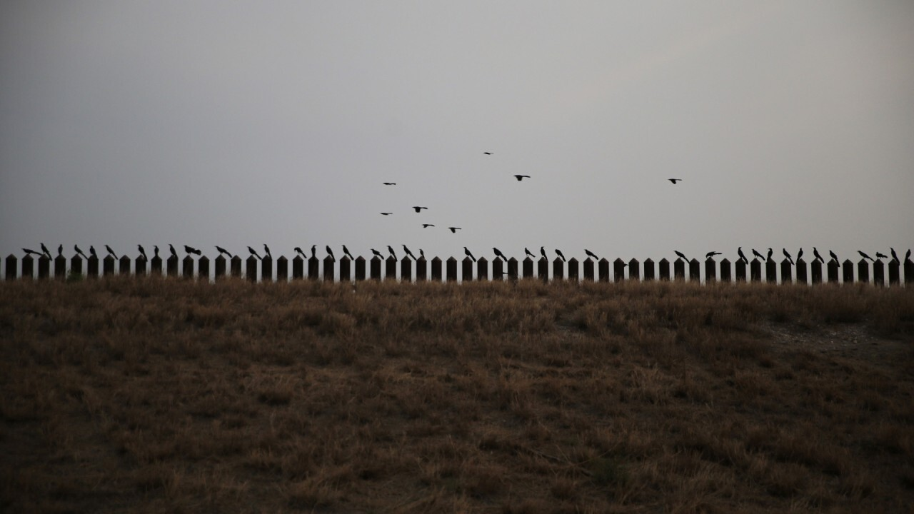 US-Mexico wall projects need to be completed, former Border Patrol official says
