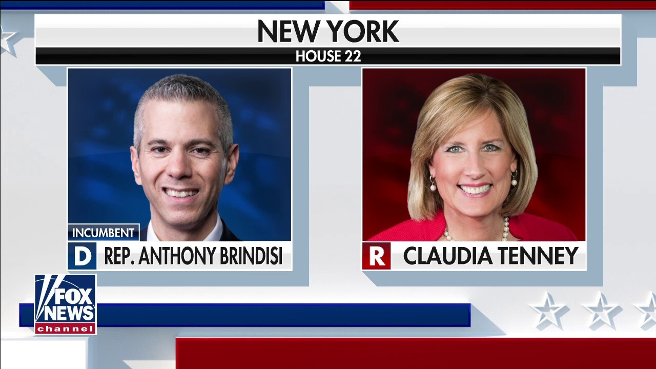New York's 22nd congressional seat remains undecided