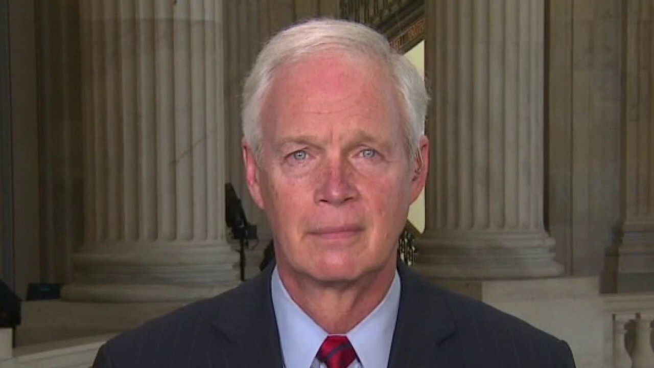Border surge becoming 'disaster' of Biden's own making: Sen. Johnson