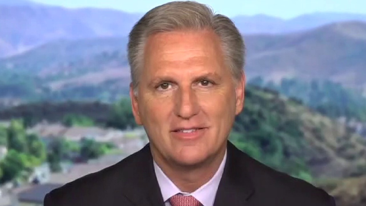 'Democrats are destroying this nation': Rep. McCarthy
