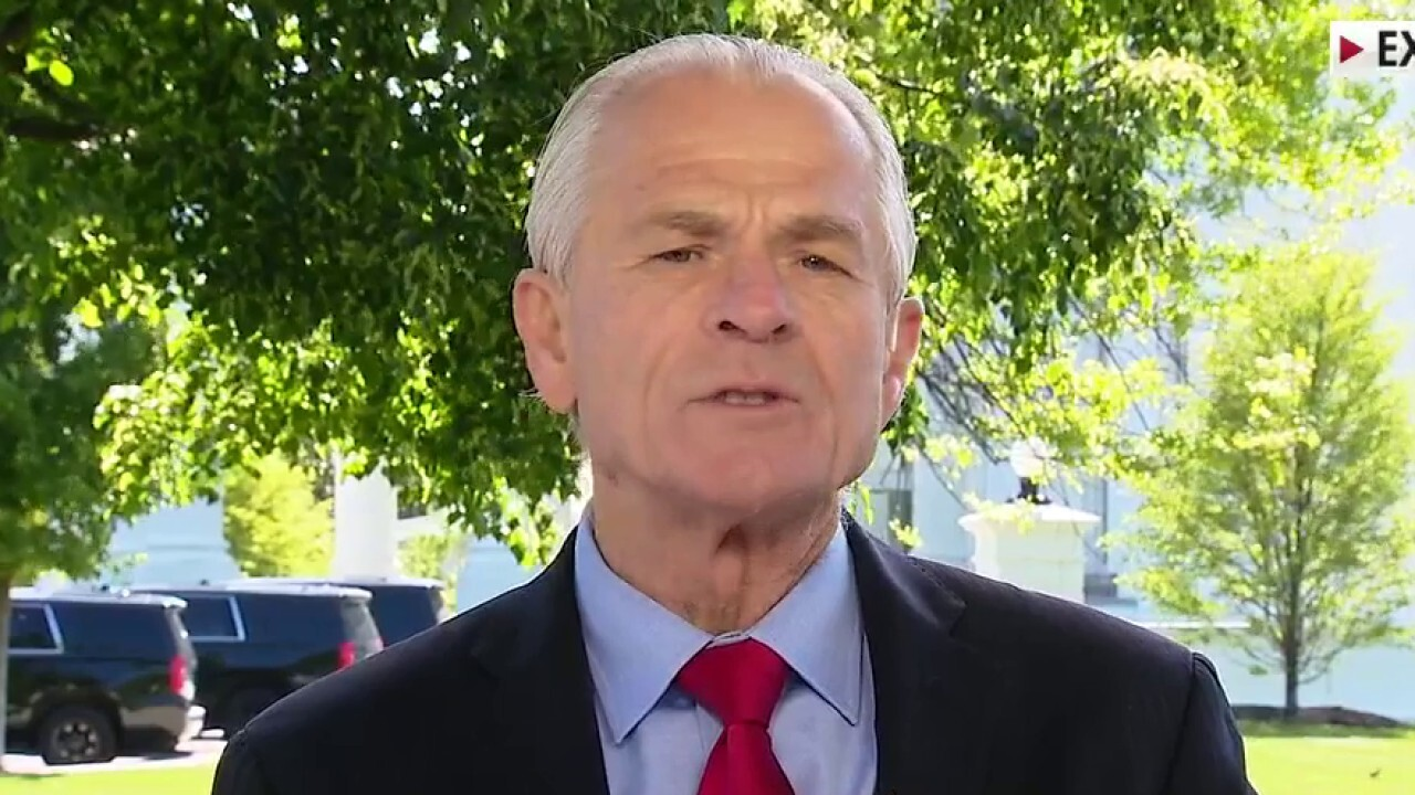 Peter Navarro: Patient zero was in Wuhan mid-November