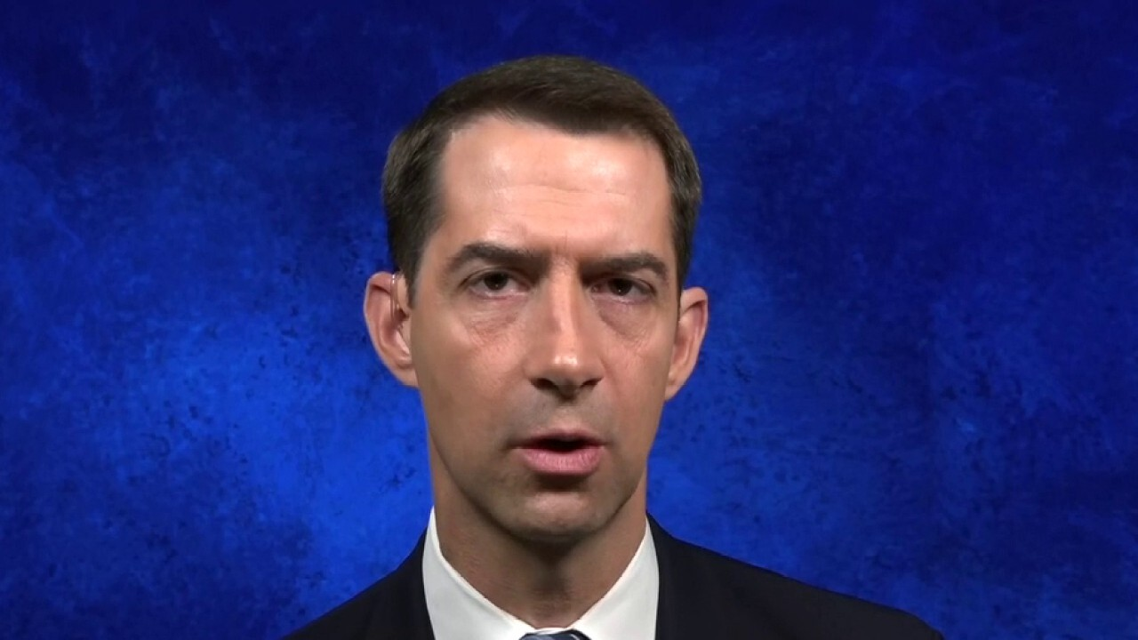 Senator Cotton's plan to make China pay for 'unleashing pandemic' on the world