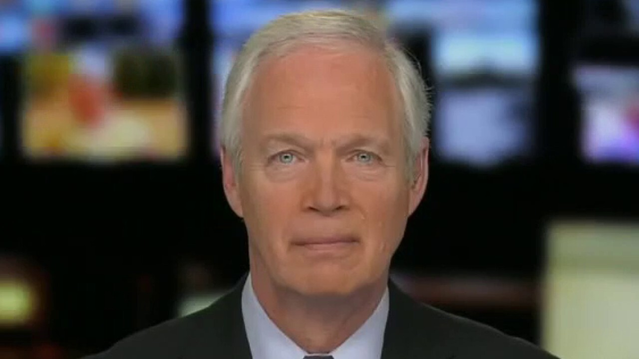 Sen. Johnson on what GOP can do to stop Democrats' agenda