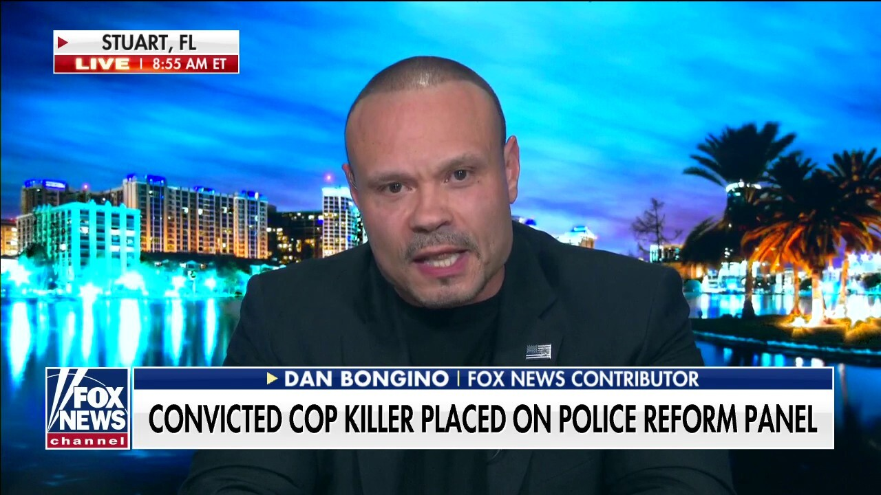 Bongino: How does looting, destroying businesses help bring justice?