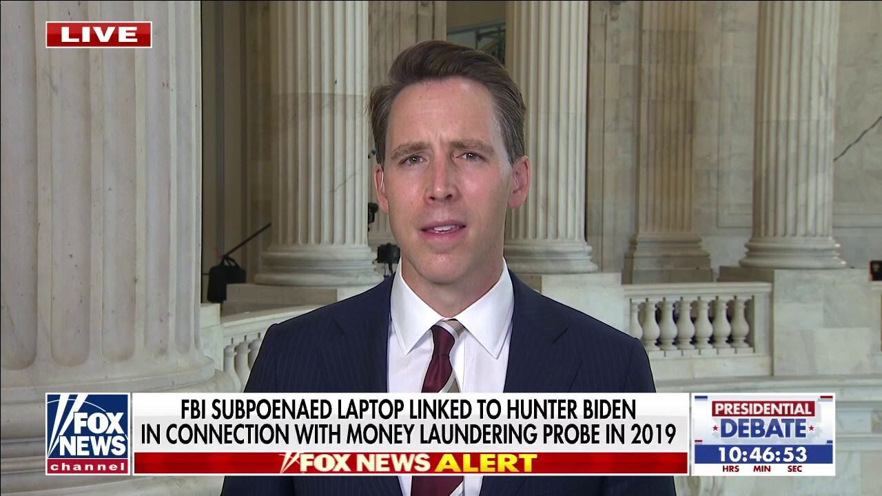 Big Tech execs 'think they'll control' Joe Biden: Sen. Hawley