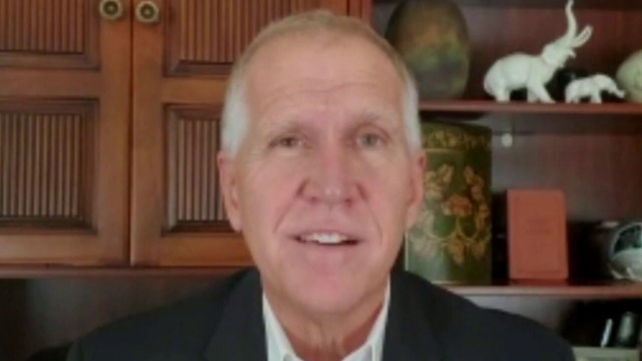 Sen. Thom Tillis on why North Carolina is crucial in 2020 race