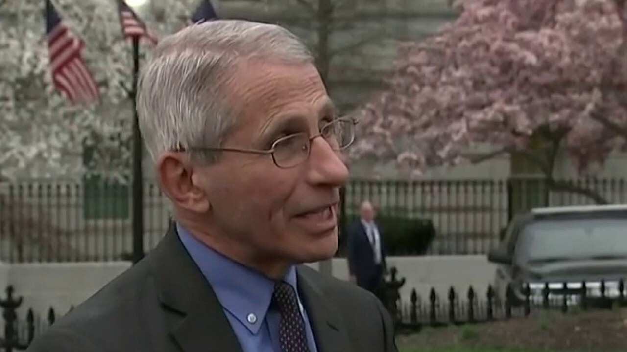 Dr. Anthony Fauci expects to see a lot more coronavirus infections in US