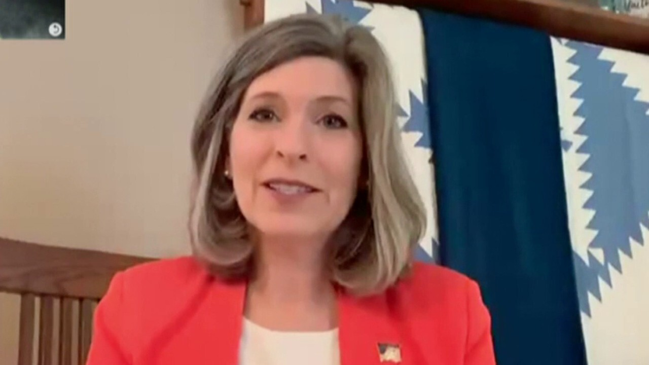 Sen. Ernst: 'Narrowly crafted bill' created to replenish funds for PPP, Democrats 'hijacked' with unrelated items
