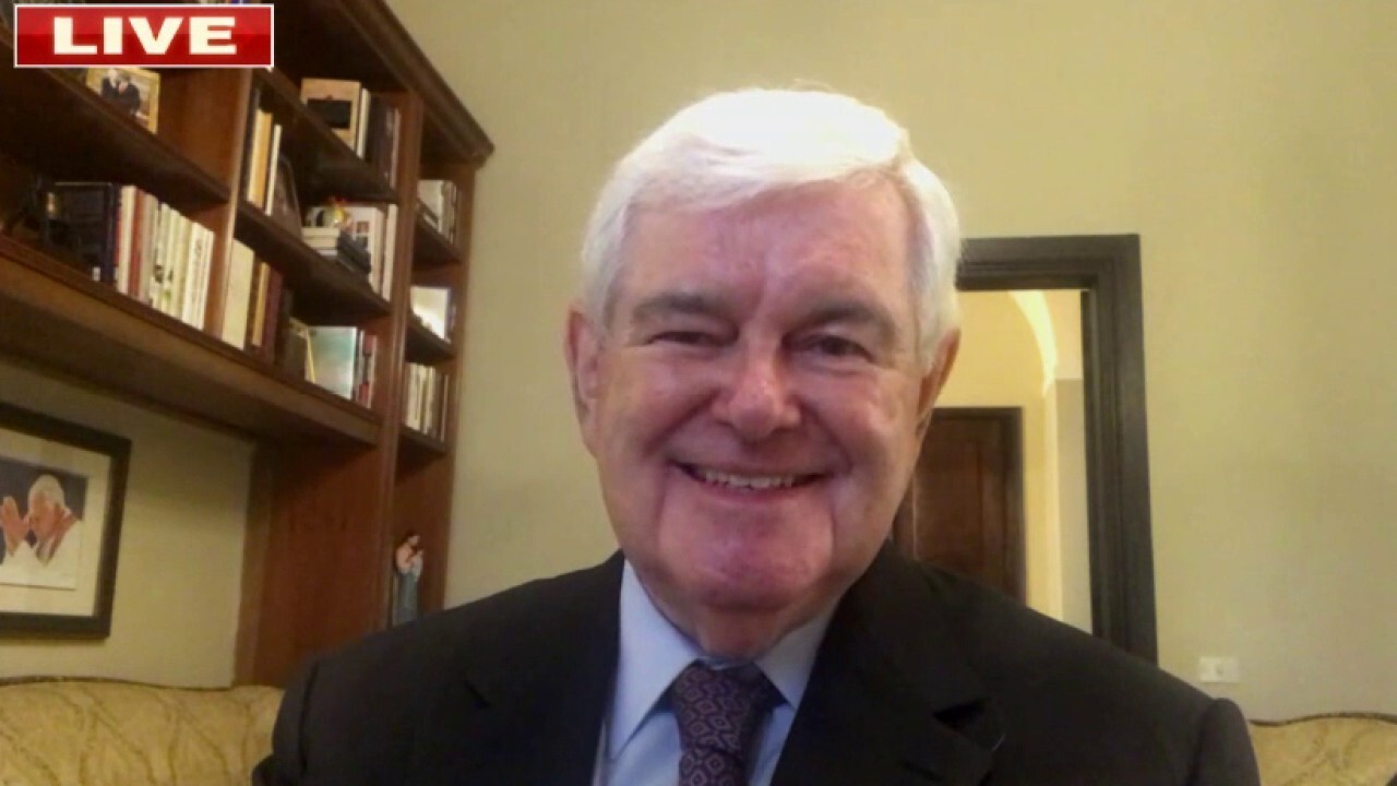 'The Democrats are running two big gambles': Gingrich