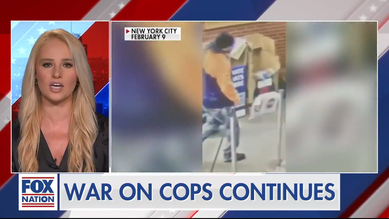 Tomi Lahren: There is a war on cops, decency and law-abiding Americans