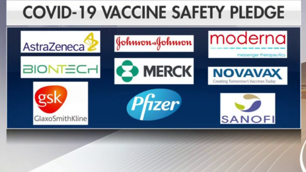 Group of drug companies pledge to make sure COVID-19 vaccines follow full regulatory path