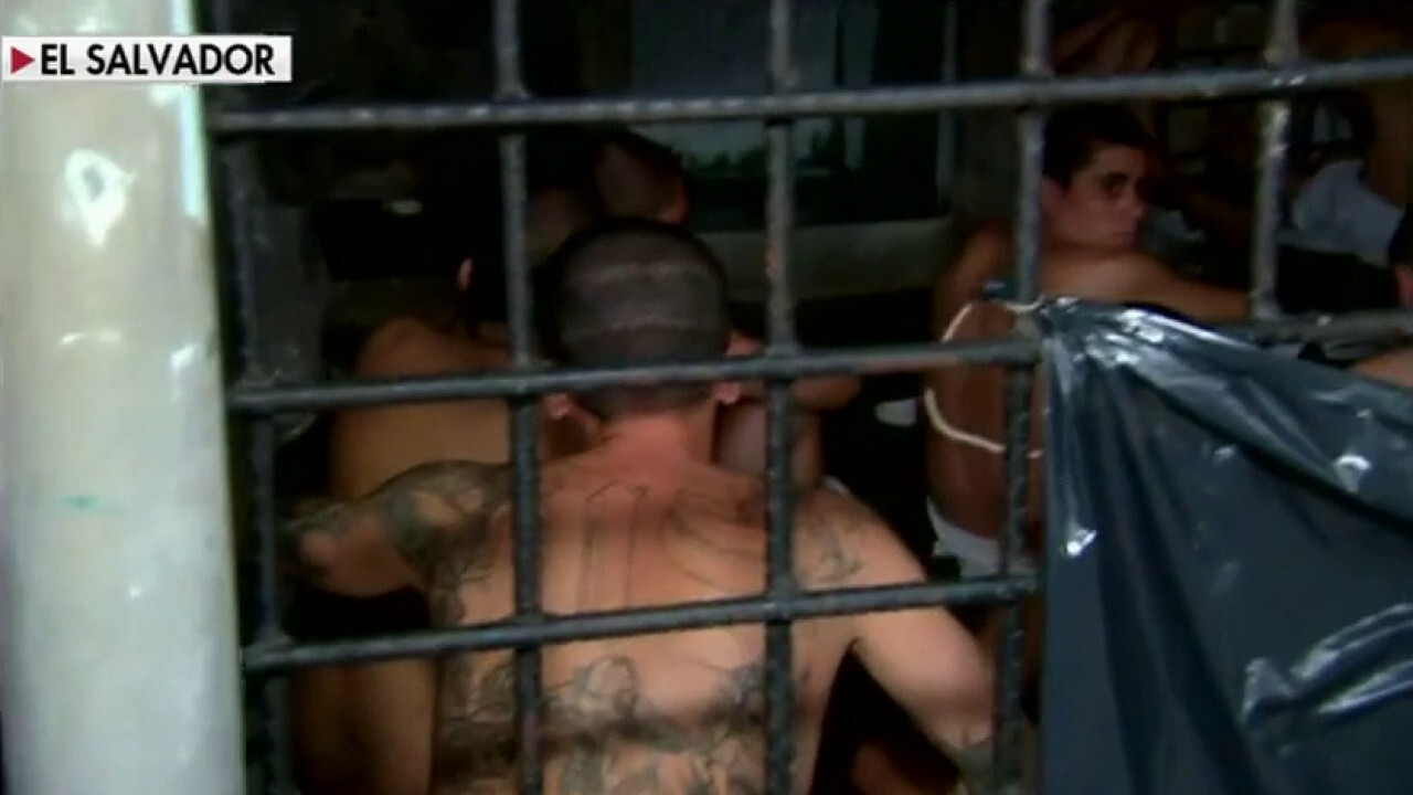 MS-13 members arrested for sex trafficking a minor