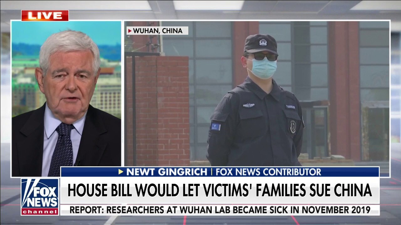 Newt Gingrich: China needs to be 'held accountable' for lying to the world about COVID-19