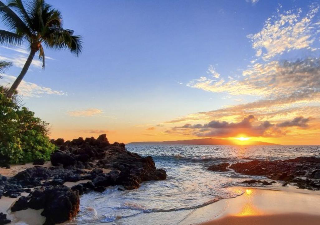 Hawaii officials intercept 'Love Has Won' cult at airport