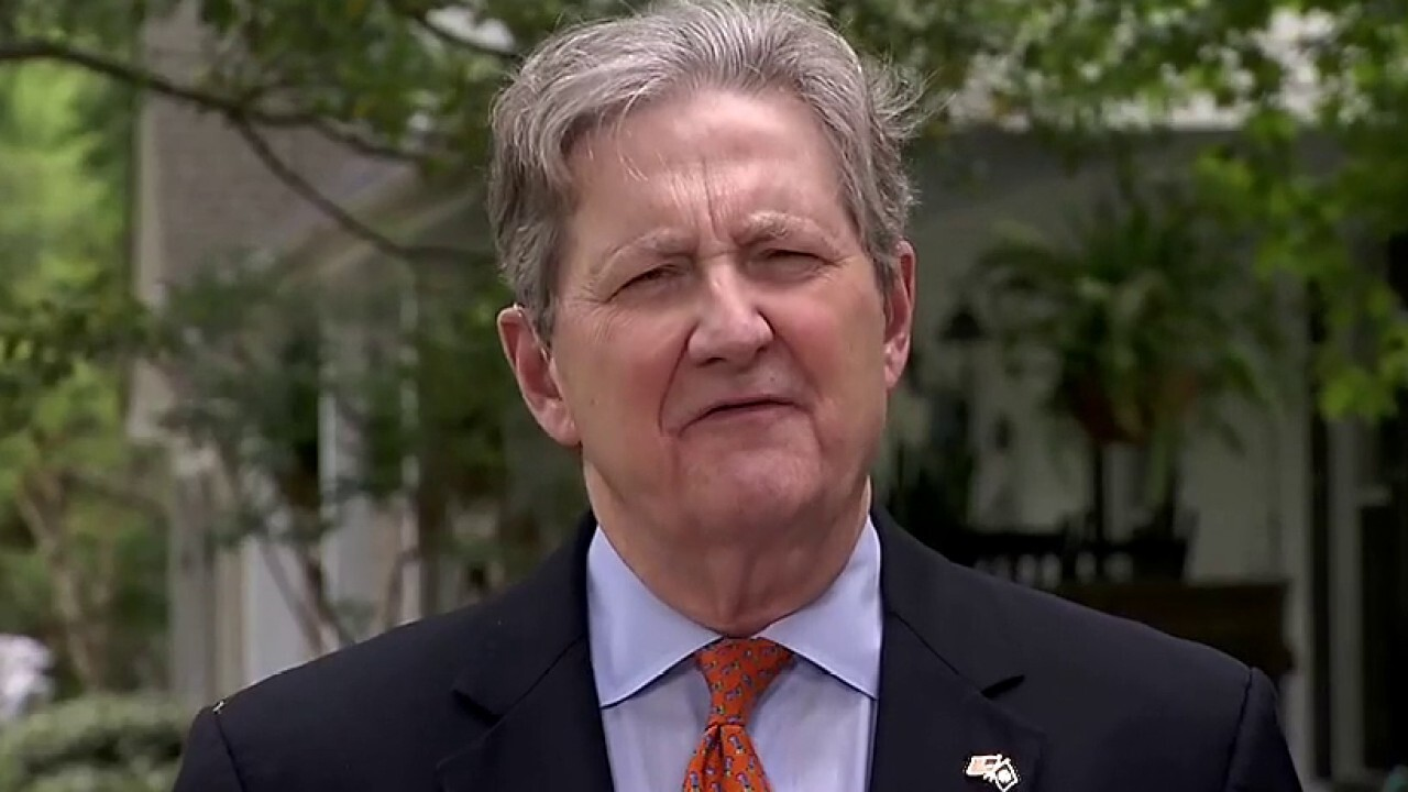 Sen. Kennedy: Congress tried to hide 'spending porn on pet projects' in stimulus bill, but Americans noticed