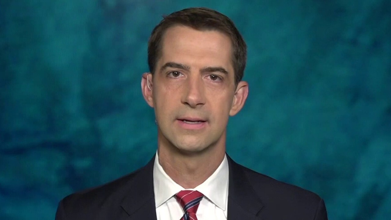 Sen. Cotton: Biden VP hopeful Susan Rice was the 'Typhoid Mary' of the Obama foreign policy