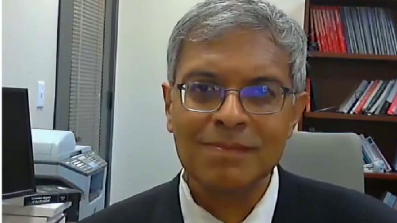 Dr. Bhattacharya: Dr. Fauci is just 'dead wrong'