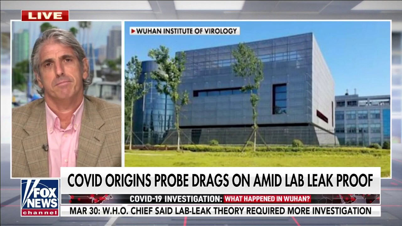 Former State Department official flags WHO probe into COVID-19 origins as 'incomplete,' potentially 'corrupt'